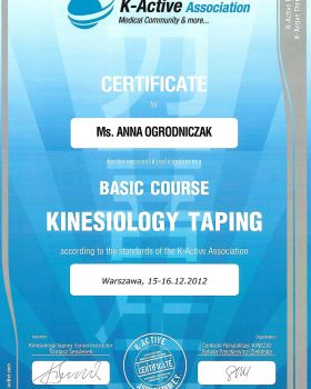 kurs podstawowy Kinesiology Taping